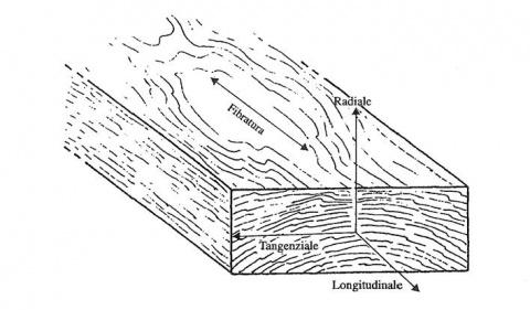 caratteristiche-meccaniche-del-legno
